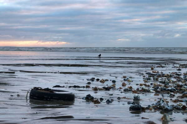A tyre and chain lay half buried in sand at low tide with the surf in the background