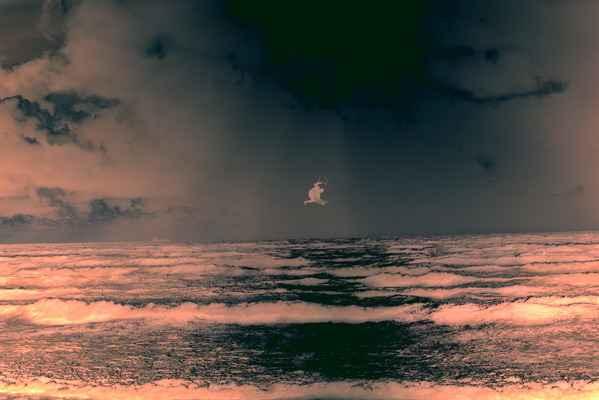 Negative of dramtic kite surfer image